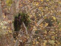 Wildreness Gardens Preserve